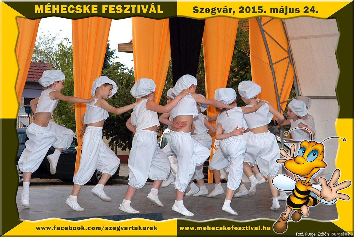 2015.05.24. 207 Szegvár és Vidéke Tak. Szöv. - Méhecske Fesztivál 2015. - Fotó:PURGEL ZOLTÁN©.jpg