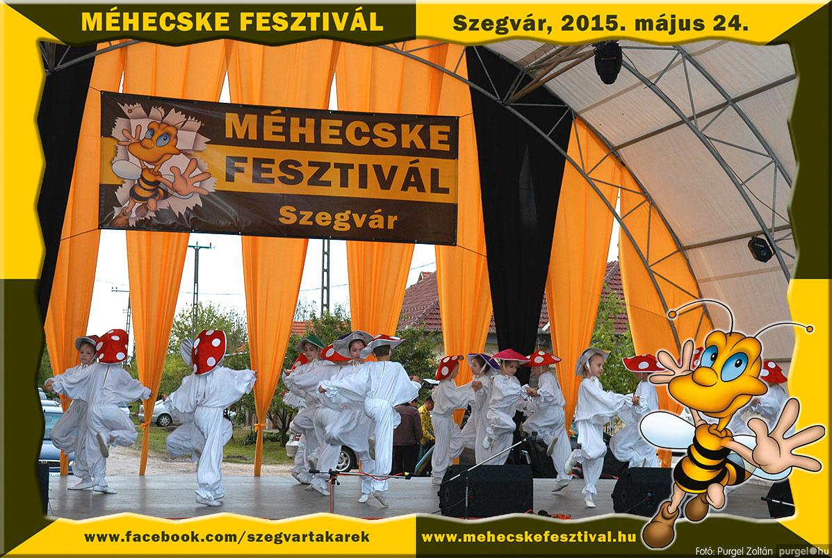 2015.05.24. 201 Szegvár és Vidéke Tak. Szöv. - Méhecske Fesztivál 2015. - Fotó:PURGEL ZOLTÁN©.jpg