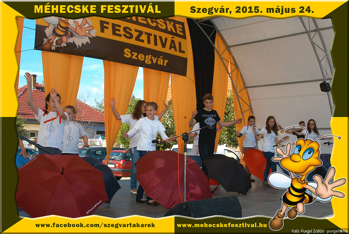 2015.05.24. 133 Szegvár és Vidéke Tak. Szöv. - Méhecske Fesztivál 2015. - Fotó:PURGEL ZOLTÁN©.jpg