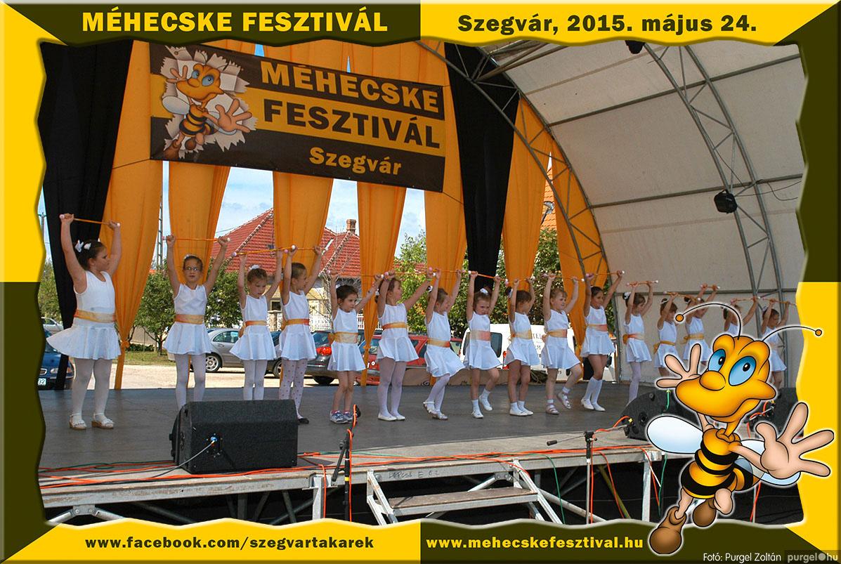 2015.05.24. 072 Szegvár és Vidéke Tak. Szöv. - Méhecske Fesztivál 2015. - Fotó:PURGEL ZOLTÁN©.jpg