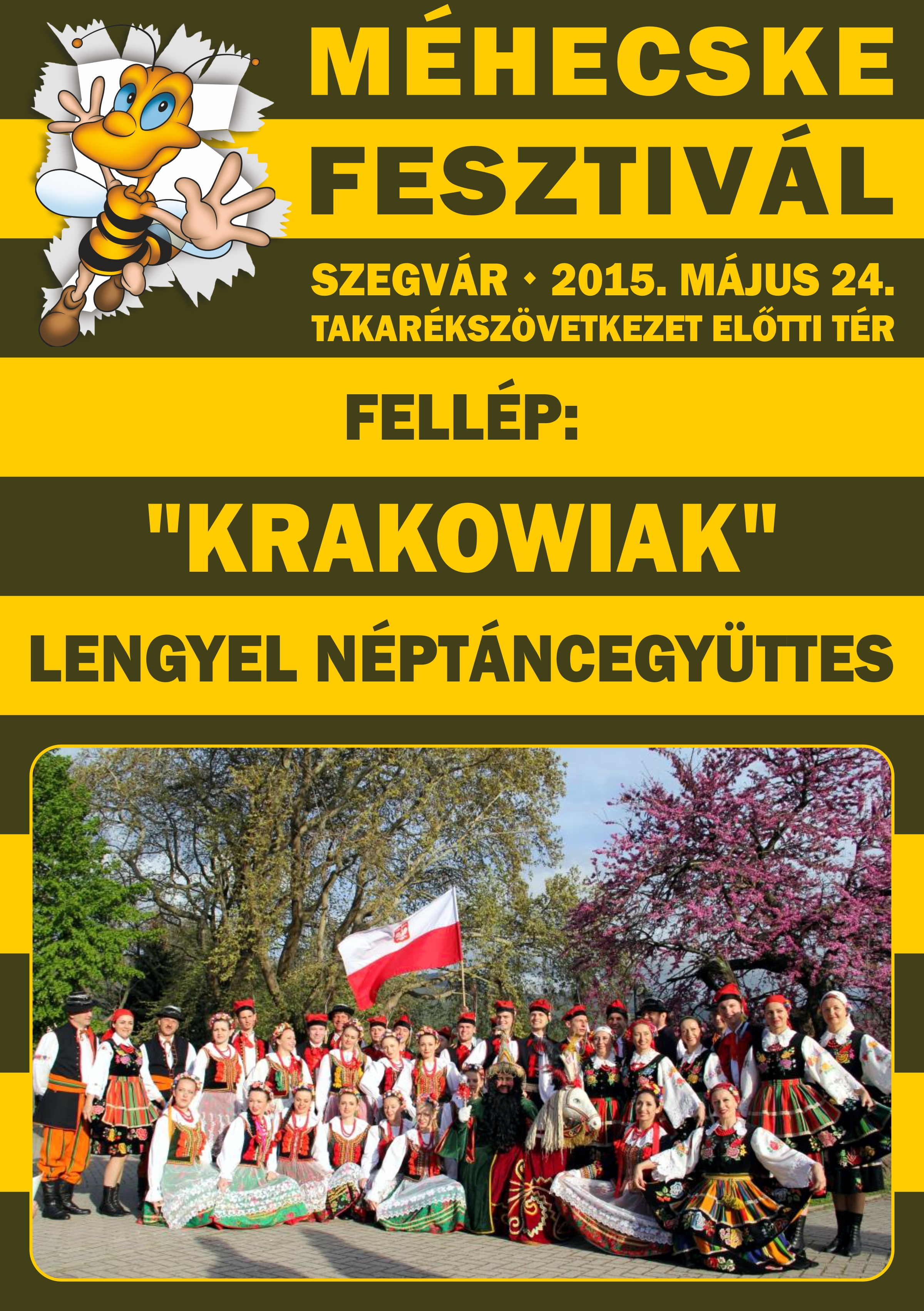 2015.05.24. Méhecske fesztivál 2015. - 09 - Készítette:PURGEL ZOLTÁN©.jpg