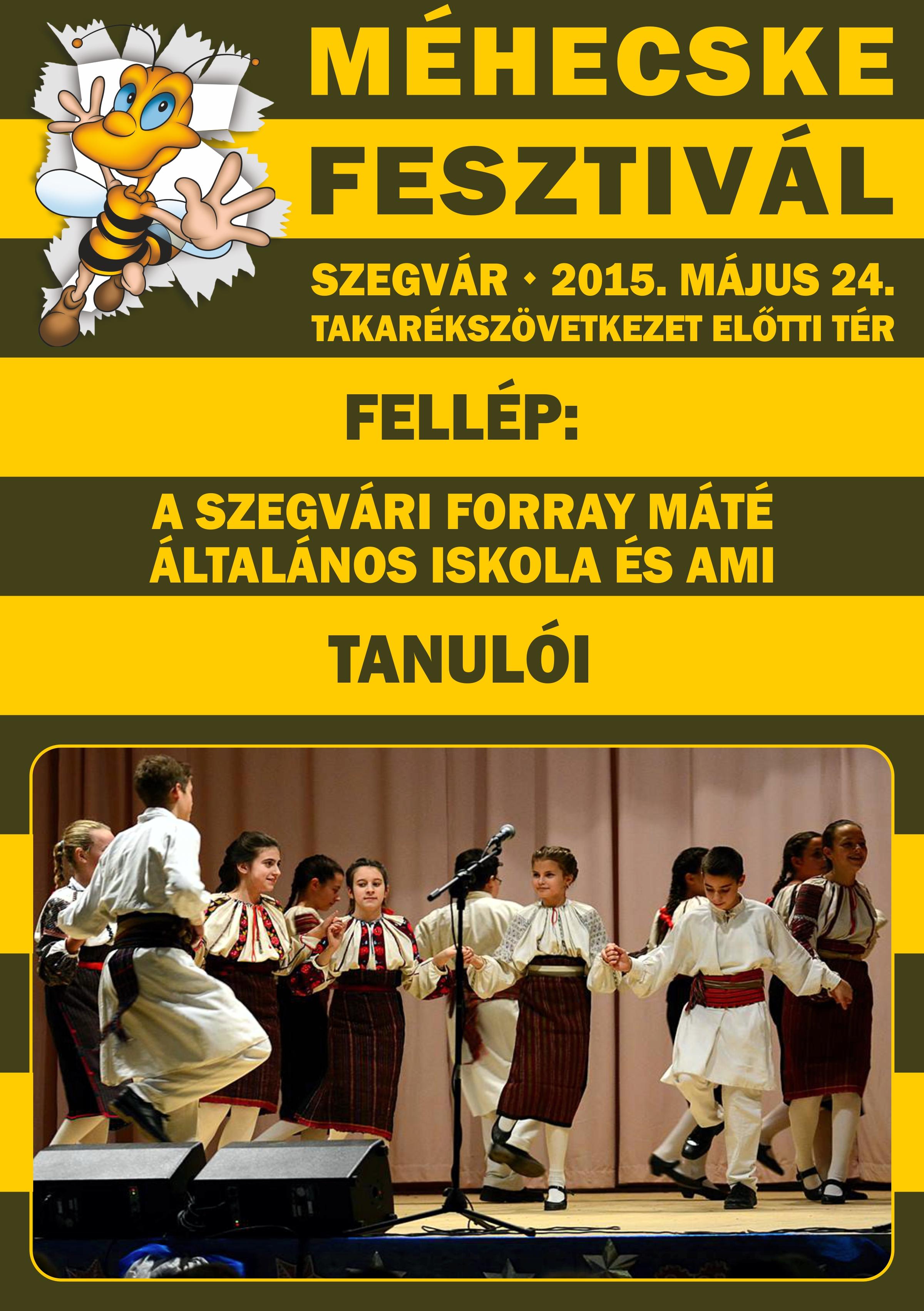 2015.05.24. Méhecske fesztivál 2015. - 06 - Készítette:PURGEL ZOLTÁN©.jpg