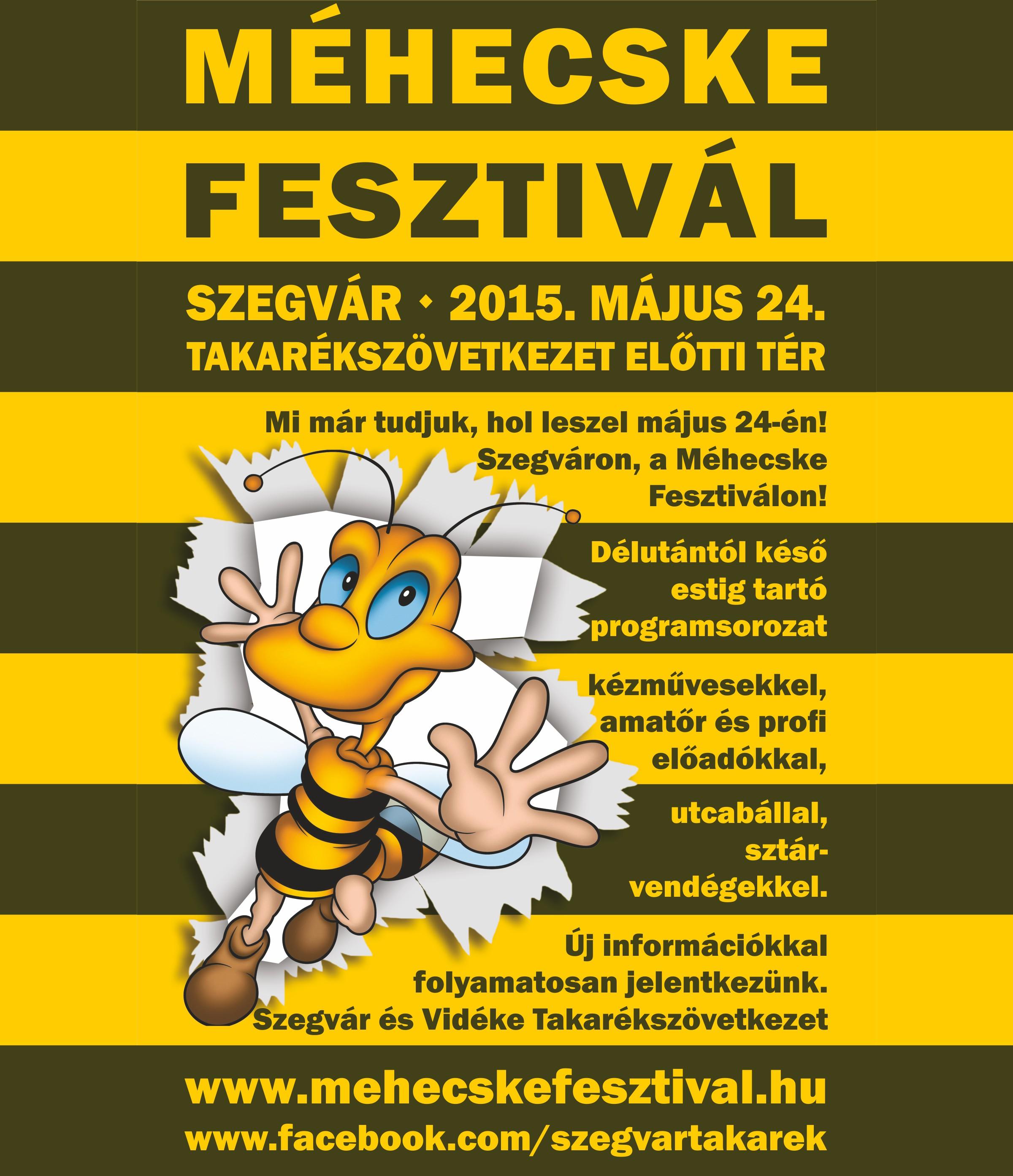 2015.05.24. Méhecske fesztivál 2015. - 01 - Készítette:PURGEL ZOLTÁN©.jpg