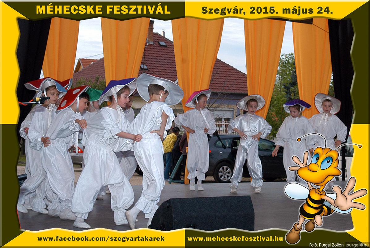 2015.05.24. 203 Szegvár és Vidéke Tak. Szöv. - Méhecske Fesztivál 2015. - Fotó:PURGEL ZOLTÁN©.jpg