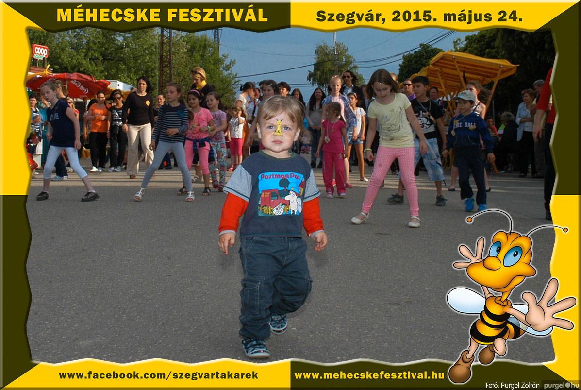 2015.05.24. 176 Szegvár és Vidéke Tak. Szöv. - Méhecske Fesztivál 2015. - Fotó:PURGEL ZOLTÁN©.jpg