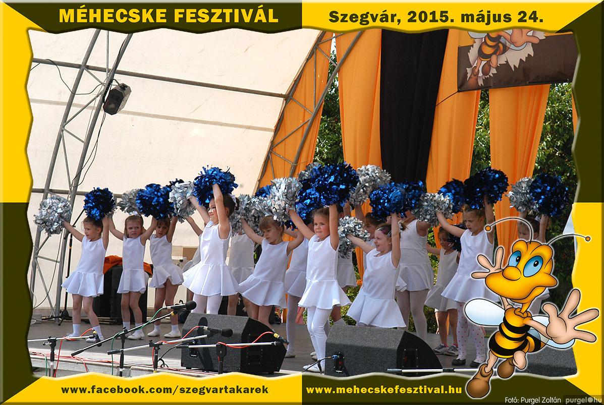 2015.05.24. 083 Szegvár és Vidéke Tak. Szöv. - Méhecske Fesztivál 2015. - Fotó:PURGEL ZOLTÁN©.jpg