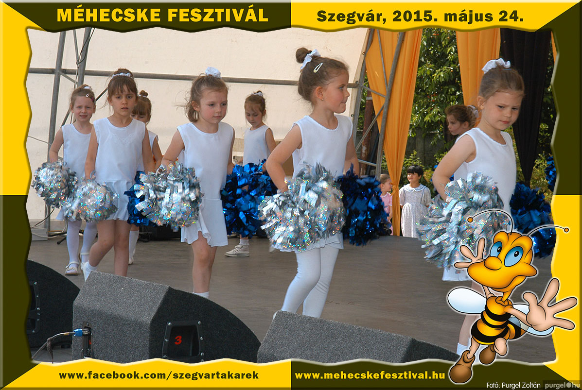 2015.05.24. 079 Szegvár és Vidéke Tak. Szöv. - Méhecske Fesztivál 2015. - Fotó:PURGEL ZOLTÁN©.jpg