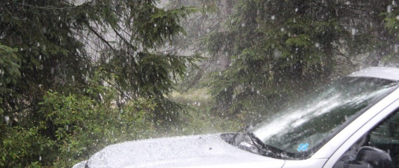 Běh na Králický Sněžník dal zabrat závodníkům i pořadatelům