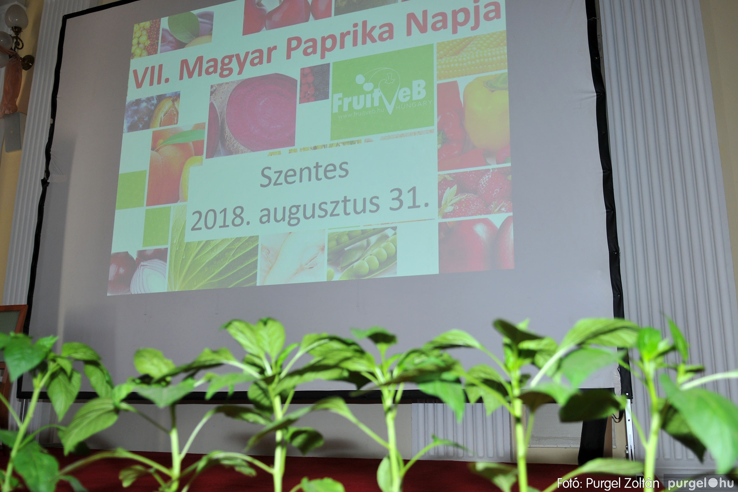 2018.08.31. 040 VII. Magyar paprika nap Szentesen - Fotó:PURGEL ZOLTÁN© D3K_5286q.jpg