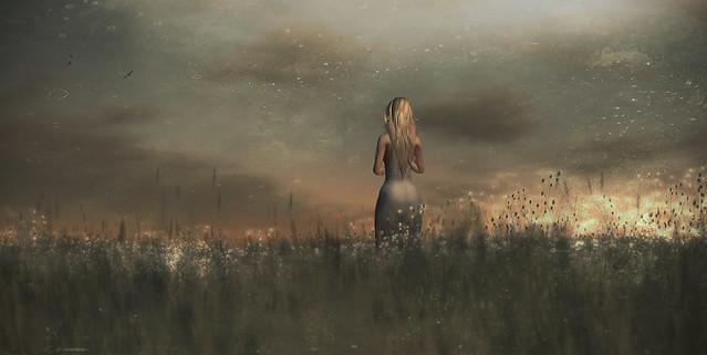 she waits . {fae forest} .