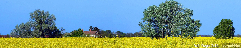 2007.04.21. Szegvári határ panoráma 62 × 262 cm - Fotó:PURGEL ZOLTÁN©.jpg