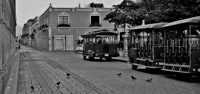 MEXICO, frühmorgens in Campeche, 19164/11825