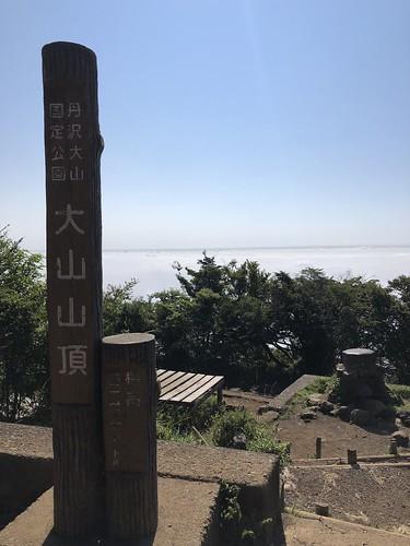 大山(神奈川県)山頂からの雲海