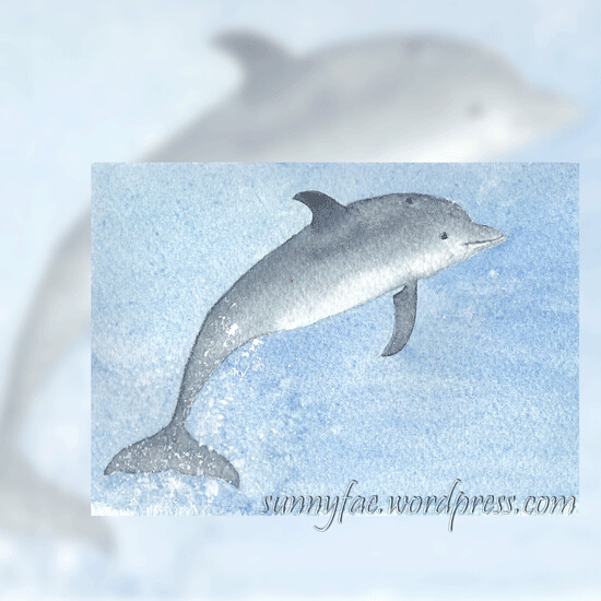 dolphin watercolour painting