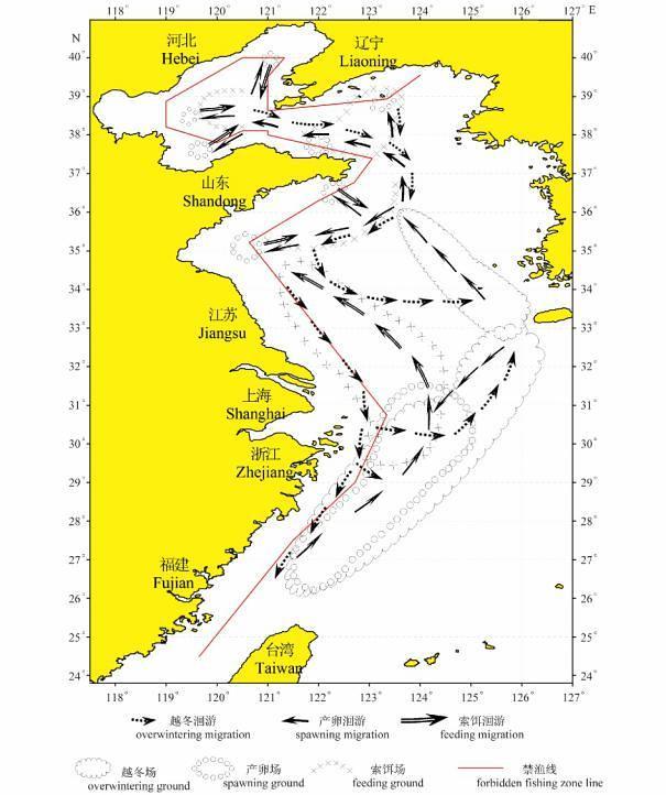 白帶魚洄游圖