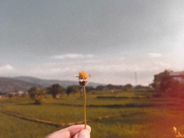zahrahnida