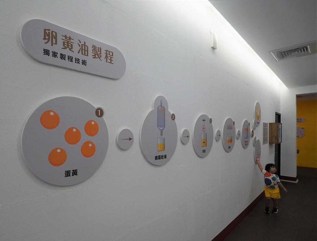 蛋寶生技不老村 (17)