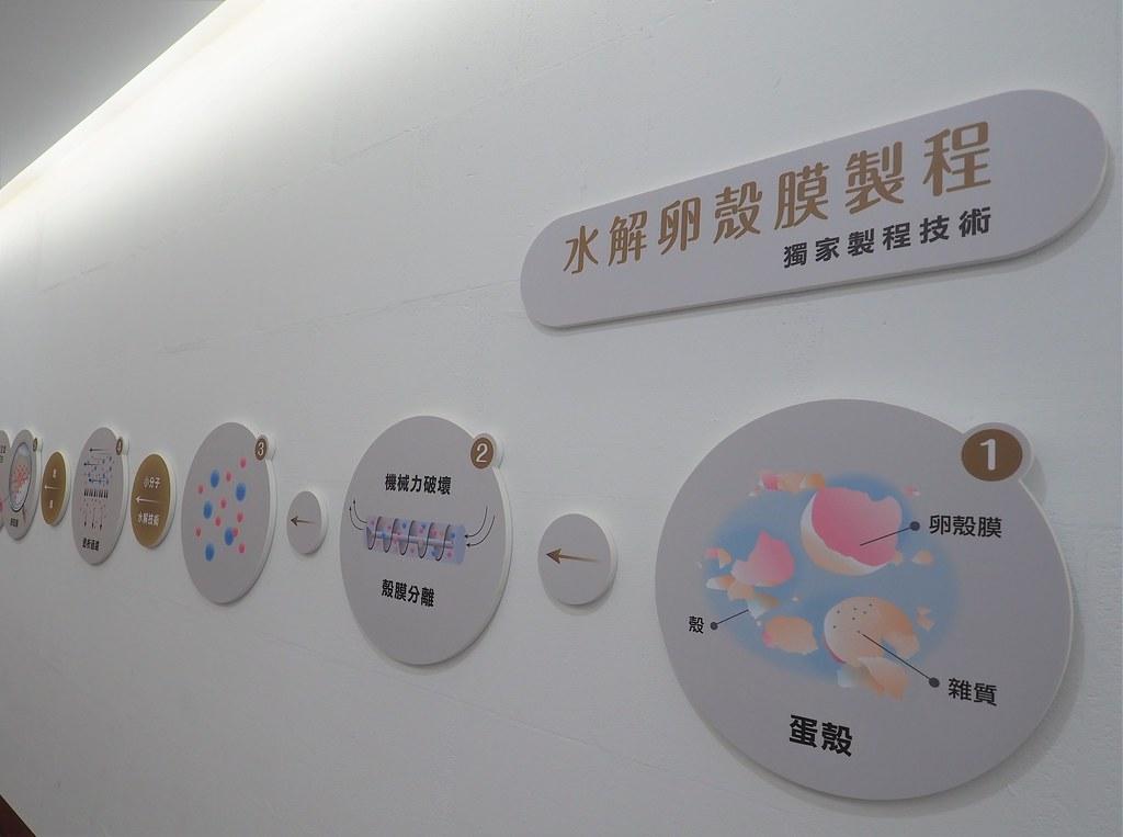 蛋寶生技不老村 (16)