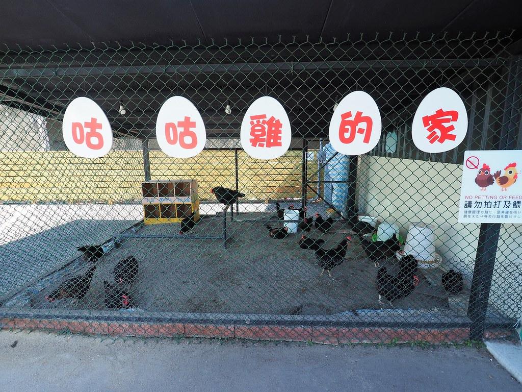 蛋寶生技不老村 (2)