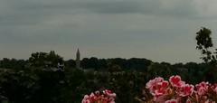 weerfoto augustus