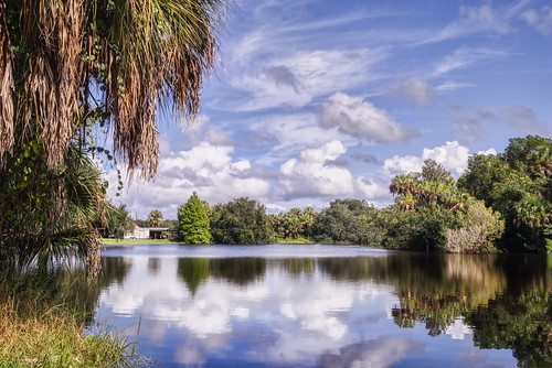 aurorahdr parrish sonyalpha clouds cloudscape florida landscape landscapephotography madewithluminar manateeriver reflections rural sonyimages tranquil trees unitedstates