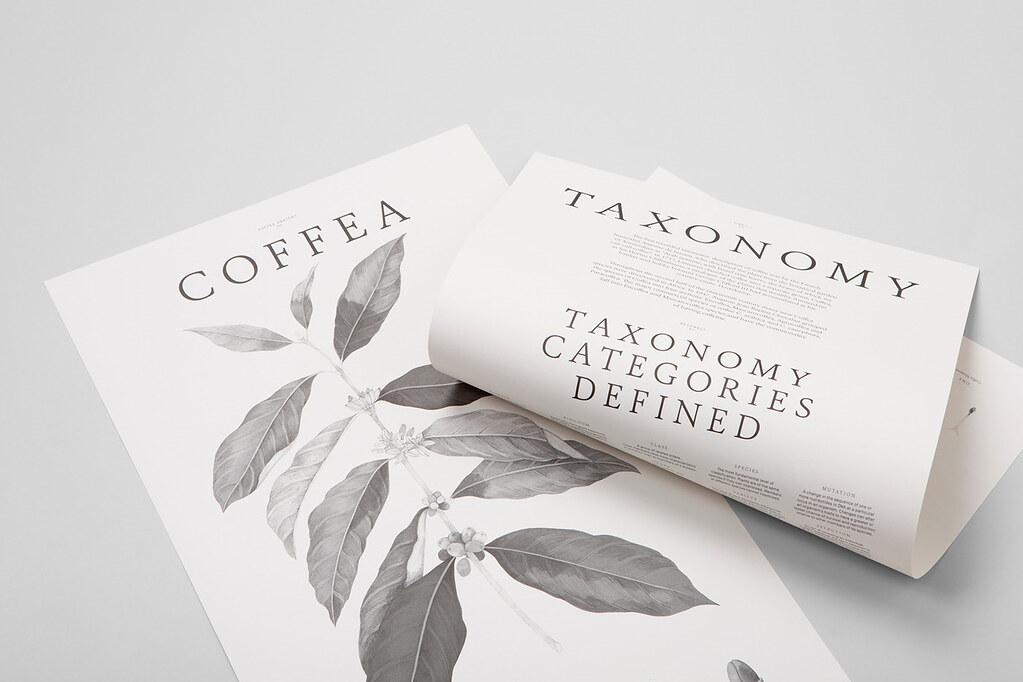 Cà phê nguyên bản Prime Coffea (1)