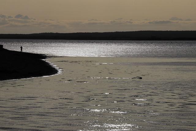 Dog Swimming, Man Standing, Sun Setting