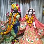 ISKCON Amravati Deity Darshan 03 Aug 2019
