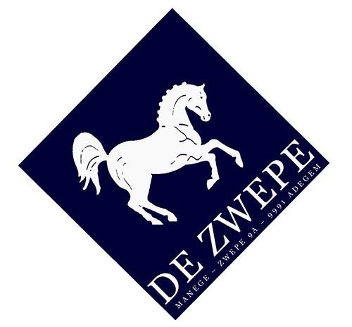 Logo Zwepe Nude