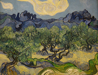 The Olive Trees   MoMA(4cb)
