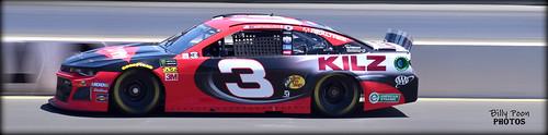 Austin Dillon - #3 Richard Childress Racing / Chevrolet