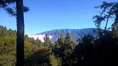 La Palma - El Gallo Paragliding