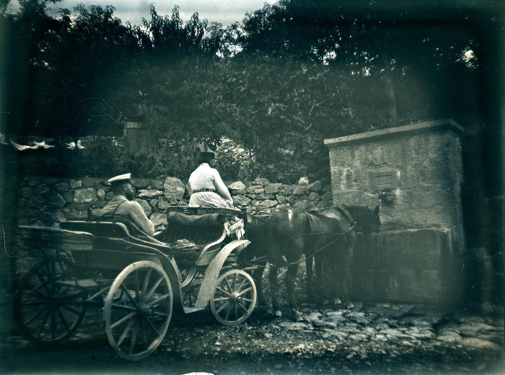 16. 1897. По дороге на Гурзуф. Бронислав Михайлович Грохольский в коляске. Лошади пьют воду