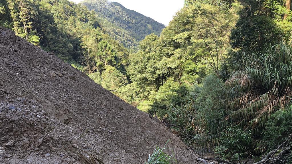 台灣地質年輕,擁有大片森林,天災衝擊下,常有崩塌現象。攝影:廖靜蕙
