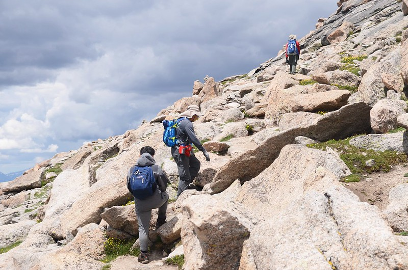 The final part of the trail travels along the south slope of Mount Evans' west ridge (16)