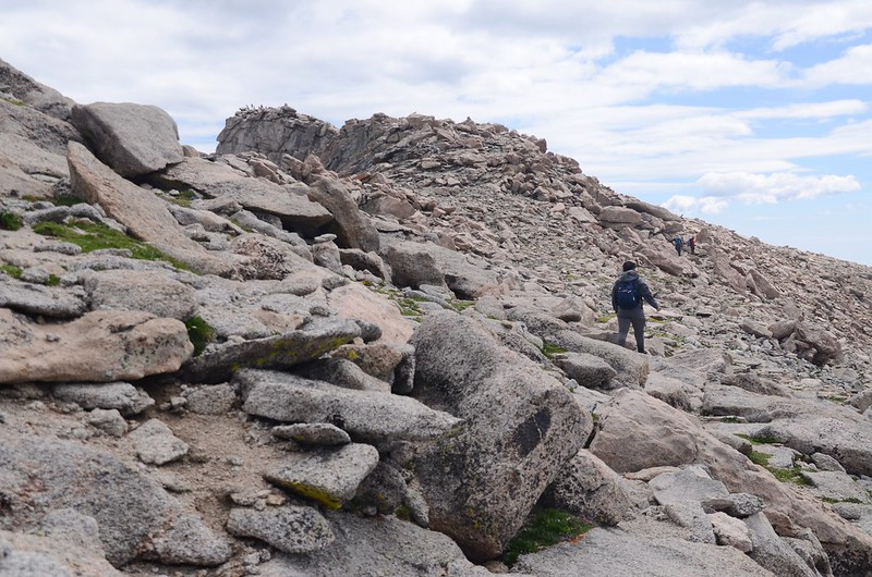 The final part of the trail travels along the south slope of Mount Evans' west ridge (11)
