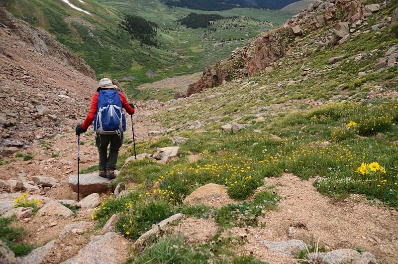 Descending the gully (7)