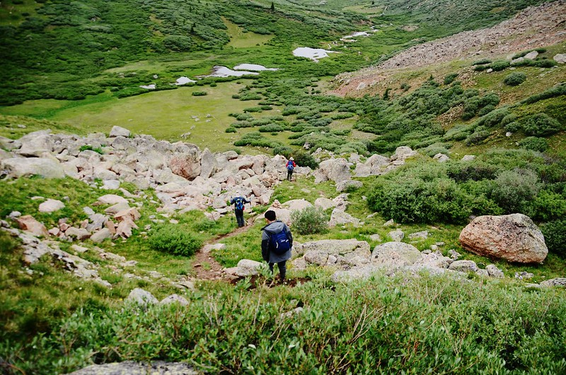 Looking down Scott Gomer Creek, descending the gully (5)