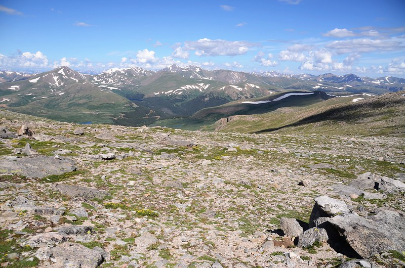 Looking back toward the gully (2)