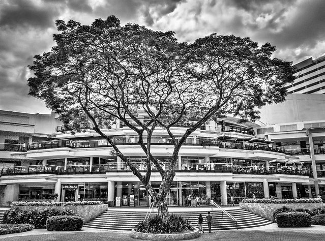 Ayala Mall Entrance