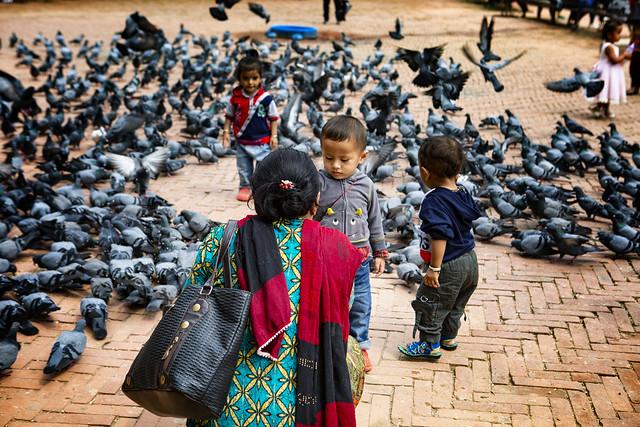 Feeding Pigeons At The Bodhnath, Kathmandu
