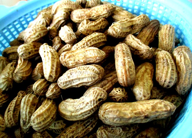 Groundnuts, cooked