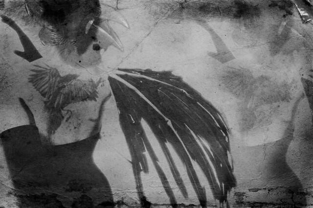 Crow Jane