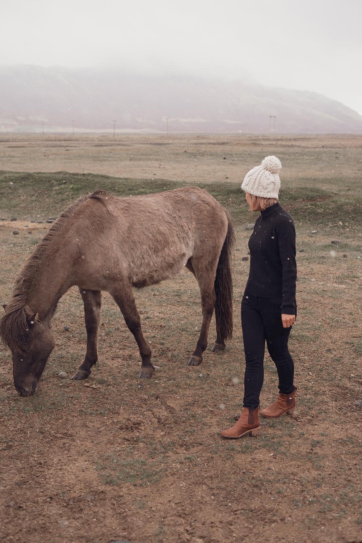 04iceland-hoffell-icelandichorses-horse-travel-style