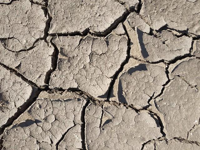 Brown cracked ground #texture 14