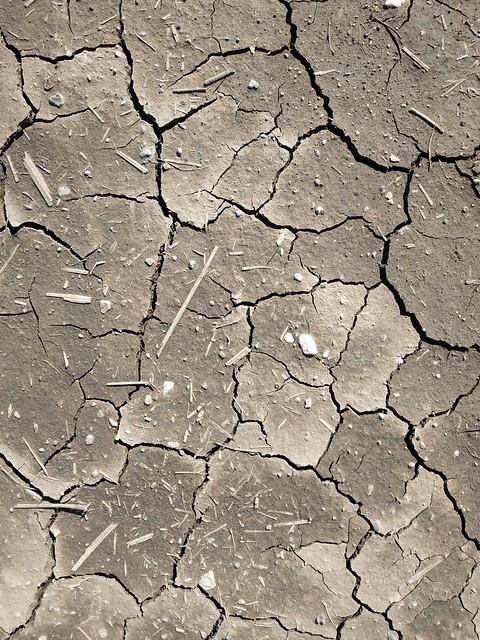 Brown cracked ground #texture 11