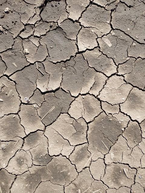 Brown cracked ground #texture 07