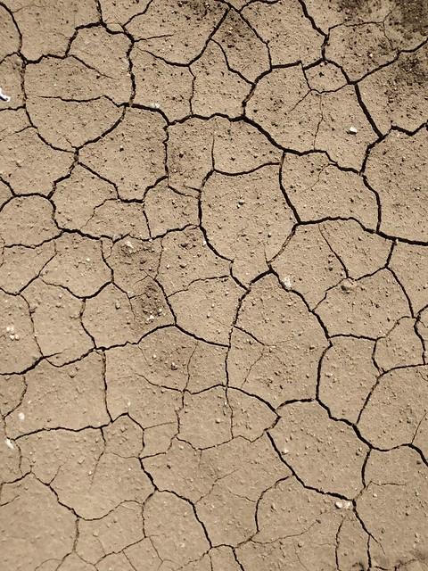 Brown cracked ground #texture 16