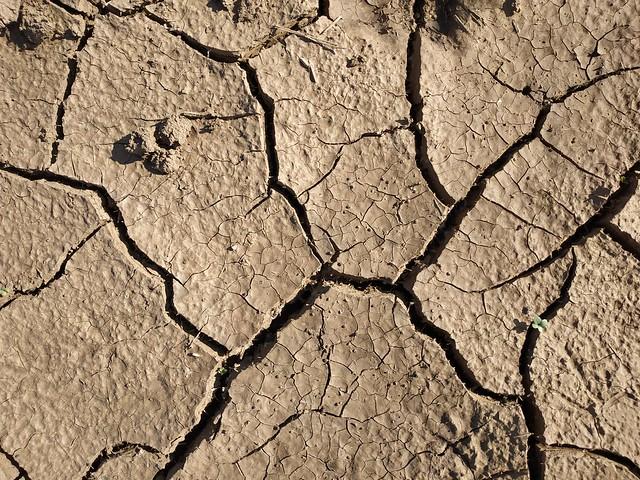 Brown cracked ground #texture 02