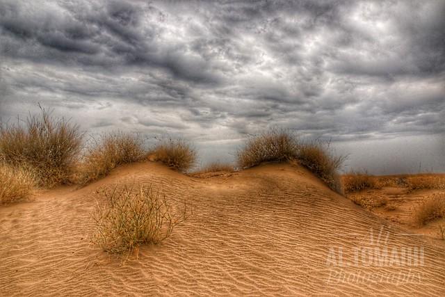 Desert details.